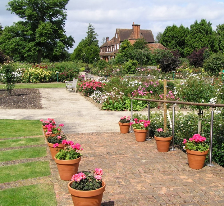 Garden of the rose, St Albans